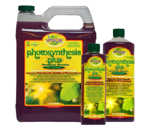 Photosynthesis Plus 3,8 Liter